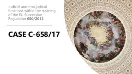 Cover Case C 657_2017